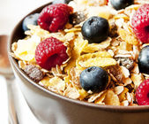 Muesli with Berries CLoseup — Stock Photo
