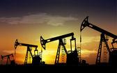 Gato de la bomba de aceite — Foto de Stock