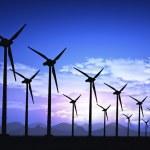 campo de viento — Foto de Stock   #13850583