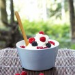 Ice cream with fresh berries — Foto de Stock