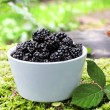 Stock Photo: Bowl with blackberry fruits