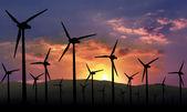 Eolian farm renewable energy — Stock Photo