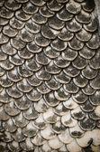 Cierre de piel concreto naga — Foto de Stock