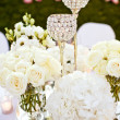 Wedding glasses set — Stock Photo #16499981