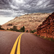 Zion National Park, USA — Stock Photo #19214921