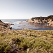Point Lobos, Carmel, California - Stock Photo