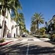 Постер, плакат: Rodeo Drive during sunny day