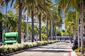 View of Rodeo Drive, Beverly Hills — Stock Photo