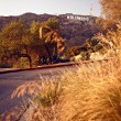 Iew of Hollywood sign - Foto Stock
