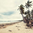 Stock Photo: Great Mission Beach in Queensland