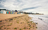 Brighton baai beachhouses — Stockfoto
