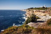 Naturally rocky coast in Sydney — Stock Photo