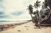Great Mission Beach in Queensland — Stock Photo