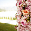 Pink roses and peonies wedding arch — Stock Photo