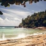 Beach and ocean — Stock Photo #37557419