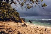 Beach and ocean — Stock Photo