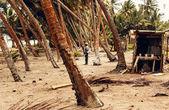 Caribbean beach before tropical storm — Stock Photo