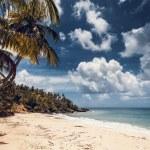 Beach and ocean, Dominican Republic — Stock Photo #37612789