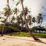 Beach and ocean, Dominican Republic — Stock Photo #37612827