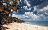 Pláž a moře, Dominikánská republika — Stock fotografie