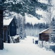 Stock Photo: Village in winter forest in Central Finland