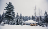 Wooden house in winter forest — Stock Photo