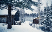 Village in winter forest in Central Finland — Stock Photo