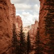 Bryce Canyon National Park — Stock Photo #39965733