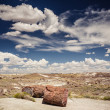 Stock Photo: Petrified Forest National Park