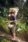 Young farming woman on Bali — Stock Photo