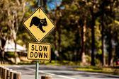 Koala Crossing sign — Zdjęcie stockowe
