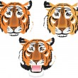 Tigers heads — Stock Vector #51460889