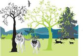 Wolves in nature — Stock Vector