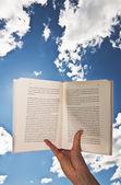 Reading — Stockfoto