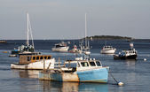 Maine's boats — Stock Photo