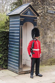 Queen's guards — Stockfoto