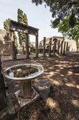 Pompeii Theatre — Photo