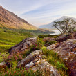 Scenic Llyn Idwal — Stock Photo