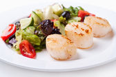 Salad of scallops on a white plate — Stock Photo