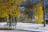 First snow in the park — Stock Photo