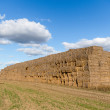 Haystack — Stock Photo #30322051