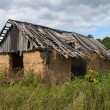 Old farm shack — Stock Photo #30392435