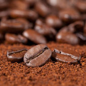 Macro shot of coffee beans — Stock Photo