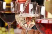 Winetasting — Stock Photo