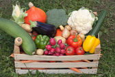 Fresh vegetables in a wooden box — Stock Photo