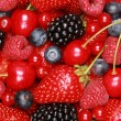 Collection of berries — Stock Photo #13550851