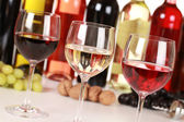 Different wines — Stock Photo