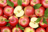 Red apples with leaves — Stock Photo