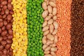 Collectie van linzen, erwten, bonen en maïs — Stockfoto