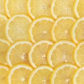 Sliced lemons — Stock Photo